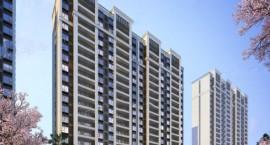 苏州豪门府邸规划布局 建筑形式  住宅户型